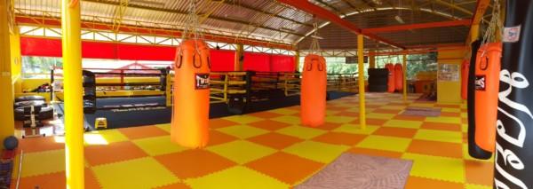 7 Muay Thai Gym facility